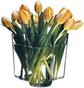 Iittala Aalto Vase Höhe 16 cm