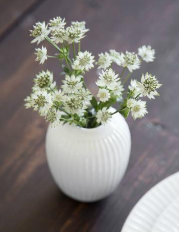 Kaehler Design Hammershoi Vase Hoehe 10 cm