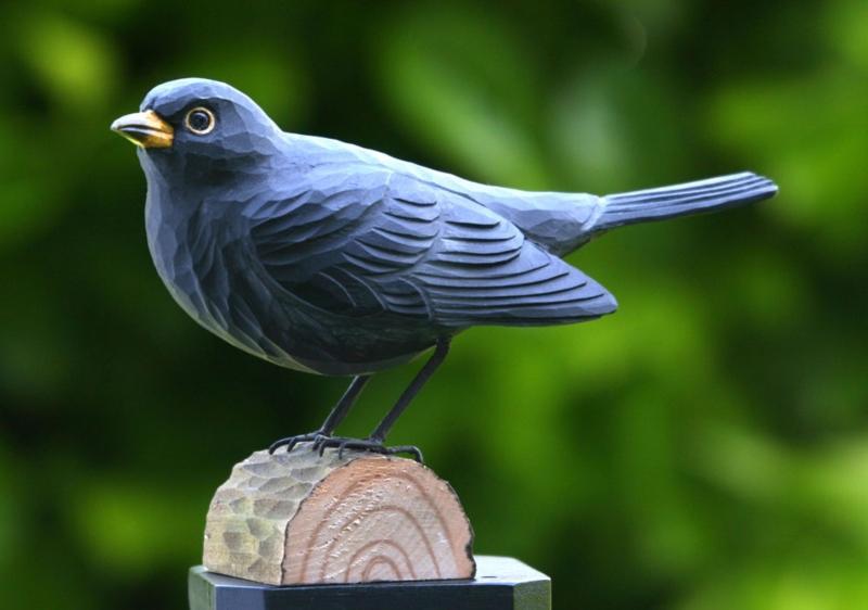 Wildlife-Garden-DecoBird-Amsel-1054
